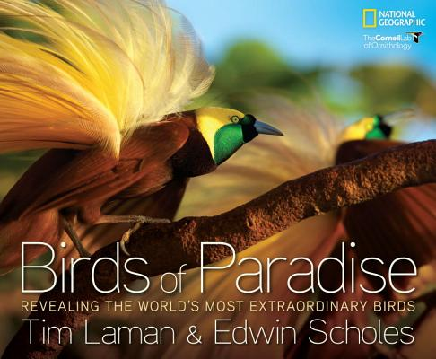 Birds of Paradise By Laman, Tim (PHT)/ Scholes, Edwin